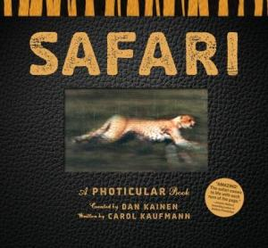 Safari by Dan Kainen