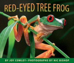 Red-eyed Tree Frog by Joy Cowley, Photographs by Nic Bishop [***]