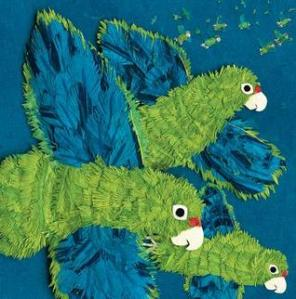 Parrots Over Puerto Rico by Susan L. Roth, Illustrated by Cindy Trumbore [***]