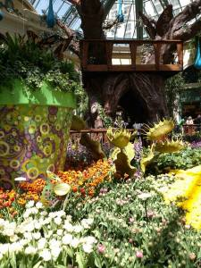 The Bellagio Botanical Garden's theme is Spring but I like to think of it as Butterfly Garden.