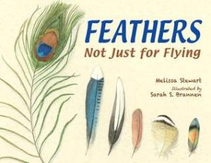 Feathers: Not Just for Flying by Melissa Stewart, Illustrated by Sarah S. Brannen [***]