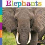Elephants (Seedlings) by Kate Riggs [***]