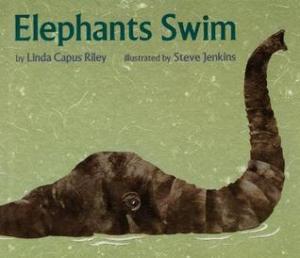 Elephants Swim by Linda Capus Riley, Illustrated by Steve Jenkins [***]