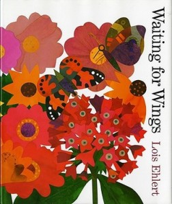 Waiting for Wings by Lois Ehlert [***]