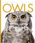 Owls by Valerie Bodden [***]