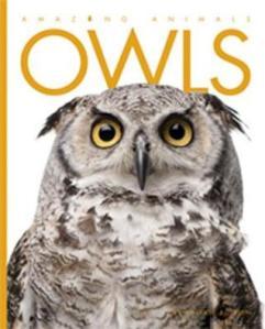 Amazing Animals: Owls by Valerie Bodden [***]
