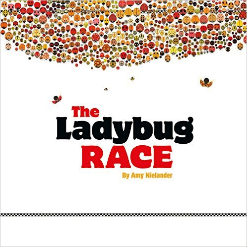 The Ladybug Race by Amy Nielander