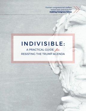 indivisibleguidecover